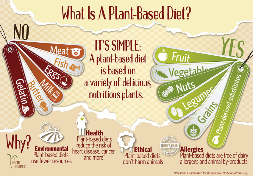 October_What_Is_A_Plant_Based_Diet_v4_Logo_Blog
